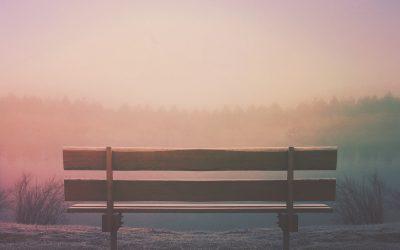OASIS: Una pausa que hace bien